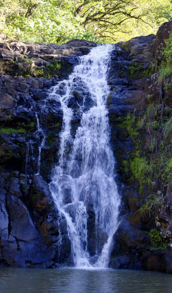 Waimea Falls szd
