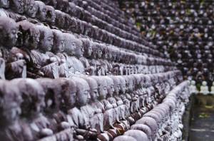 Little buddhas profile